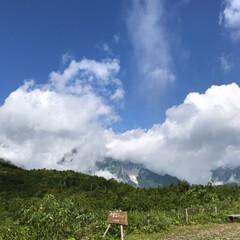 運転手はノンアルコール/何より美味しい/生ビール/おそば屋さん/下山/家族で/... 唐松岳へ☆  唐松岳でハイキング♪ 晴れ…