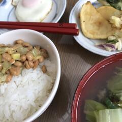 痩せたい/野菜たっぷり/お昼ごはん/白菜のお味噌汁/目玉焼き/切り材納豆/... 野菜たっぷりお昼ごはん☆  切り材納豆か…