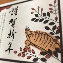 印刷/花札/年賀状/2019年/あけおめ/年末年始 年賀状☆  花札してますか⁈ 猪鹿蝶の猪…