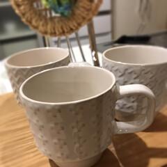 コーヒーカップ/ホワイト/お気に入り/スタッキング/カップ/100均/... セリアのスタッキングカップ☆  お気に入…