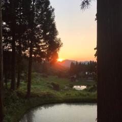 暑過ぎるくらい/いい天気/久しぶり/野の花/青空/見た/... 夕日・月・野の花☆  夕方散歩で見た夕日…