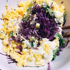 お家ごはん/夕飯/グルメ/フード/おうちごはん 鳥カツ、切り干し大根卵とじ コールスロー…(1枚目)