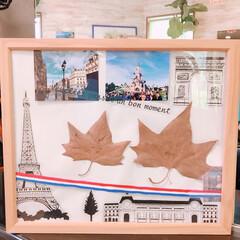 落ち葉/パリ/100均/ダイソー/セリア/ハンドメイド パリ旅行の思い出。 セリア、ダイソーなど…