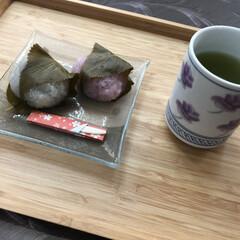 ティータイム/さくら餅/桜餅/お茶/休憩/一息/...  ✧ᴴᴱᴸᴸᴼ✧  今日も良い天気🔆🔅で…
