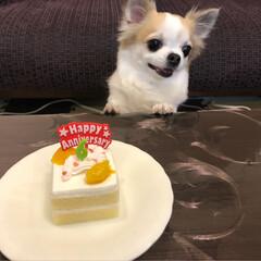 第2回 幸せ♡わたしのごはん/birthday/誕生日/お誕生日/デザート/スイーツ/... こんばんは🌙.*·̩͙.。★*゚  今日…(2枚目)