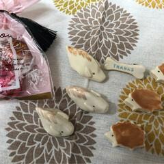 素敵/bone/ハリネズミ/イノシシ/雑貨大好き/nagomiさんの作品/... ᴴᴱᴸᴸᴼ¨̮ 先程、nagomiさんの…(2枚目)