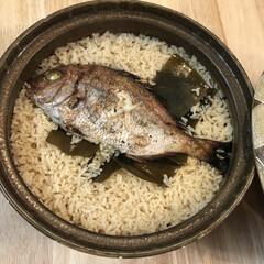 土鍋/鯛/鯛めし/チワワ/ちわわ/ロンチー/...  鯛めし ᗦ↞︎◃︎  〜  美味しく出…
