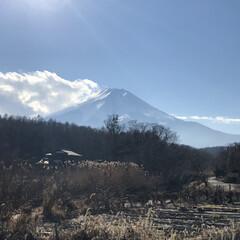 忍野/富士山/あけおめ/フォロー大歓迎/冬/ペット/... こんにちは☀️  今日は忍野に来ました!…