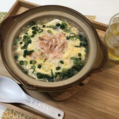 お昼ご飯/手作り/料理/桜えび/桜エビ/雑炊/... ᴴᴱᴸᴸᴼ¨̮  今日天気が良いですね🔆…