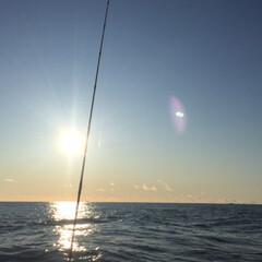 釣り/お正月2020 2020年 初釣り 鹿島港 植田丸 魚種…(3枚目)