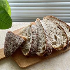 ココス/天然酵母パン 今朝は、上の部屋のリフォーム工事の音で目…