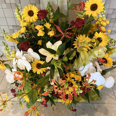 お花がいっぱい 長くて短く感じるゴールデンウィークでした…