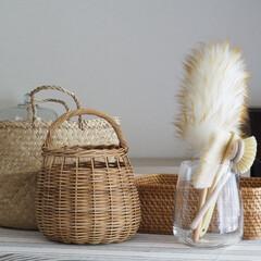 はたき ウールダスターS(モップ、雑巾)を使ったクチコミ「愛用しているカゴたちと、その掃除グッズた…」