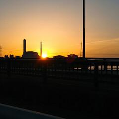 散歩/亀/刺身好き/夕日が綺麗/夕日の沈む頃/夕日の散歩に/... 今日は旦那が福岡で仕事でこっちに居なかっ…(4枚目)