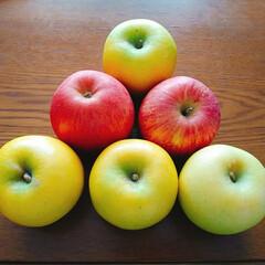 セブンルール/わたしのごはん/フード/スイーツ ホワイトデーのお返しでリンゴを頂きました…(1枚目)