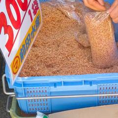 おでかけ/フード/スイーツ 昨日は朝から魚を買いに出掛けました🚙💨 …(5枚目)