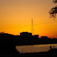 散歩/亀/刺身好き/夕日が綺麗/夕日の沈む頃/夕日の散歩に/... 今日は旦那が福岡で仕事でこっちに居なかっ…(5枚目)