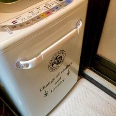 洗濯場/ランドリー/頂き物/アート/洗濯機/いつもいいねありがとうございます/... 普通の洗濯機が生まれ変わりました🤗 とい…