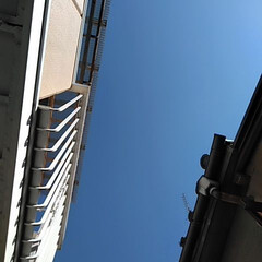 お天気/空/風景/暮らし みなさまおはようございます♪ 久々の青空…