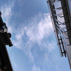 空/風景 見上げた空 15︰48 なんだかの形に見…
