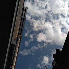 風景/空 おはようー(*^_^*) 晴れるかしら?…
