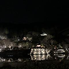夜景/ライトアップ/大阪/箕面市/初詣/冬/...  1/1の初詣は大阪箕面市にある勝尾寺に…