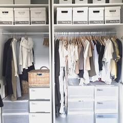フィッツケース リトル | 天馬(収納ケース)を使ったクチコミ「リビングのクローゼット収納です。 服の整…」
