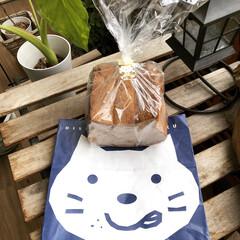猫/ガーデン/食パン/わたしのごはん/にゃんこ同好会/グルメ/... 今日、アイデア記事公開しました★ 『子供…