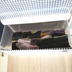 フィッツケース リトル | 天馬(収納ケース)を使ったクチコミ「前の写真の引き出しを開けた写真です。 子…」