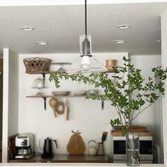 ペンダントライト/キッチン収納/枝もの/ドウダンツツジ/ガラスベース/インテリア/... お気に入りのガラスベースは、 IKEAで…(1枚目)