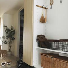 バリアフリー/玄関/玄関収納/フェイクグリーン/ワイヤーバスケット/ハンドメイド/... 我が家の玄関です。 収納用品のワイヤーカ…