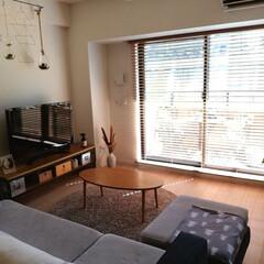 リミアな暮らし/ソファ/観葉植物/木製ブラインド/ブラインド/リビング/... ブラインドの調光によって、部屋の色が変わ…(1枚目)