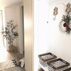 スリーエムジャパン コマンドフックM 水回り用 フック2個(吸盤フック)を使ったクチコミ「こんにちは☀️ 我が家の玄関から。 こち…」