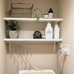 マーチソンヒューム エフォートレス フロアースプラッシュ Murchison Hume フロア用洗剤 ボトル おしゃれ アロマ ホワイトグレープフルーツ 香り(フロア用洗剤)を使ったクチコミ「こんにちは☀ 洗濯機上の棚をお掃除しまし…」