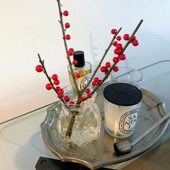 クリスマス/クリスマスのインテリア/インテリア/サンキライ クリスマスに赤い実ものを飾るだけで雰囲気…
