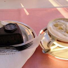 デメル/ザッハトルテ/チョコレートケーキ/インスブルック/オーストリア/旅行/... デメルのザッハトルテとカプチーノ。インス…