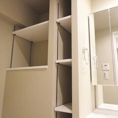 洗面収納/デッドスペース/可動棚収納 洗面室のちょっとしたデッドスペースに可動…