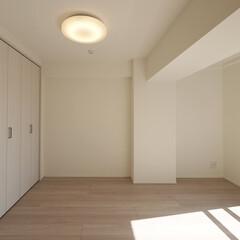 洋室/クローゼット 収納がなかった洋室にクローゼットを作り付…
