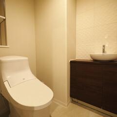 手洗いカウンター/トイレ/エコカラット 手洗いカウンターの背面にエコカラットを使…