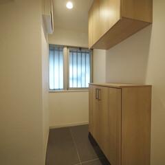 玄関/下足入れ/セパレート型/玄関収納 玄関収納は上下に分かれたセパレート型。