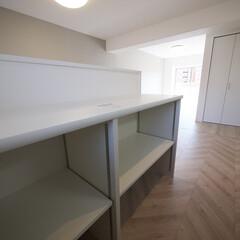 キッチンカウンター/収納 キッチンカウンターの内側には便利な収納ス…