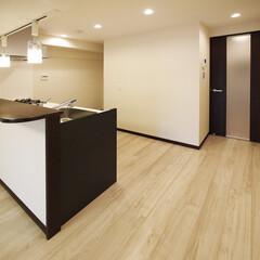 1LDK/広い/開放感 白木のフローリングと対面式キッチン