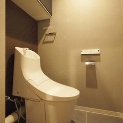 トイレ/アクセントクロス/ブラウンのクロス/ブラウンの格子柄 背面をブラウンの格子柄のクロスにしたトイレ
