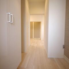 シューズクローク/玄関/玄関収納 玄関のシューズクロークは白でスッキリと。