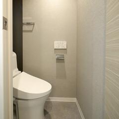 トイレ/グレイッシュカラー グレイッシュカラーを使用したシックなトイ…