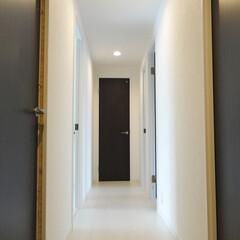 シンプルシック/モノトーンの廊下 シンプルシックな廊下。