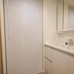 洗濯機置き場/洗面/ブラインド 洗面台の奥の洗濯機置き場はブラインドです…