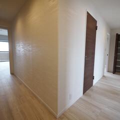 廊下/木目調クロス/可動棚収納 廊下も玄関から続く木目調のクロスを使用。…