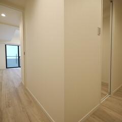 廊下/L字 L字の廊下に2つの入り口を作りました。
