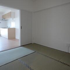 和室 約6畳の和室を残し一新しました。